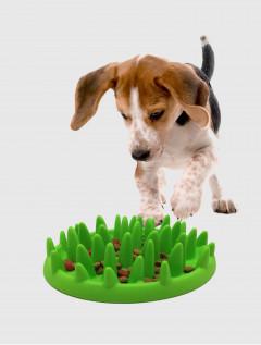 Bowl Para Mascotas Interactivo