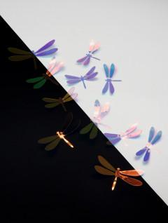 Set Libélulas Iris x 10